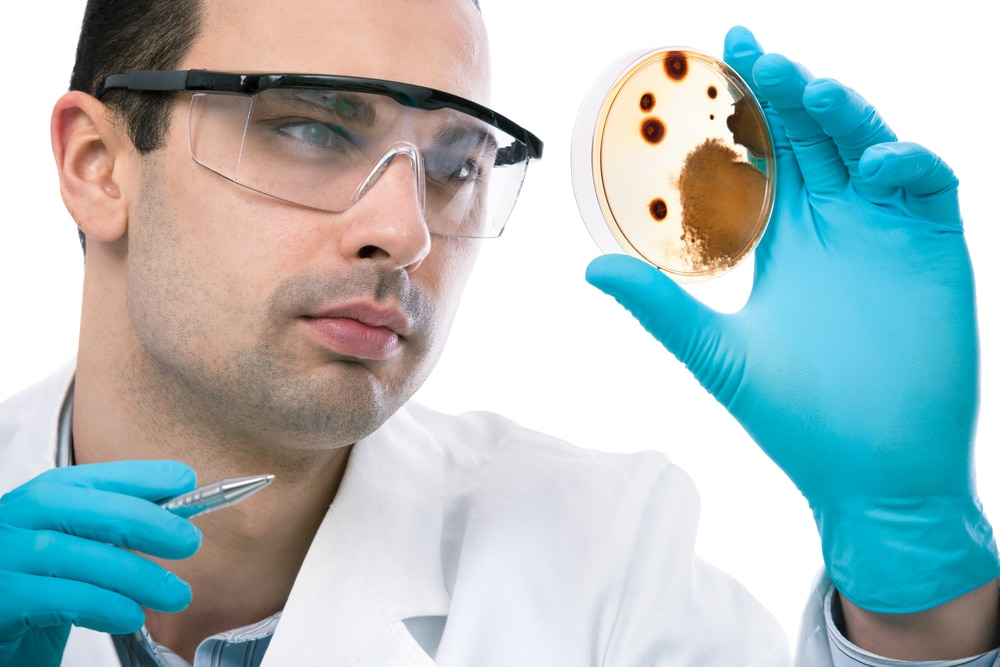 Scientist observing petri dish